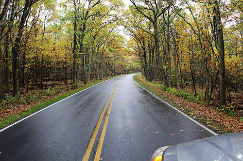 Is your vehicle ready for Autumn driving?